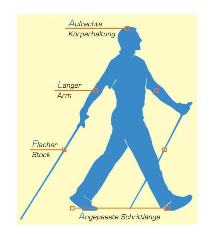 Lebensbaum Konzept, Physiotherapie, Coaching, Prävention, Nordic Walking, Gesundheit, Entspannung, Langenfeld