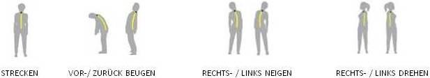 Lebensbaum Konzept, Physiotherapie, Coaching, Prävention, Gesundheit, Entspannung,  Meditation, Moving, Langenfeld
